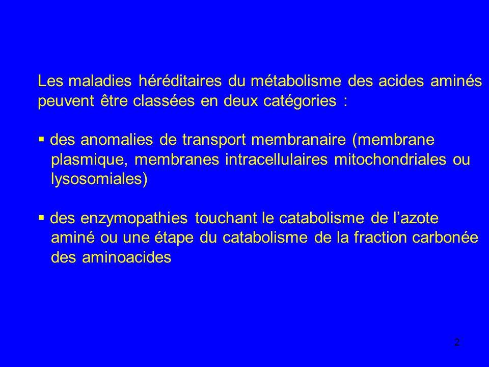 2 Les maladies héréditaires du métabolisme des acides aminés peuvent être classées en deux catégories : des anomalies de transport membranaire (membra