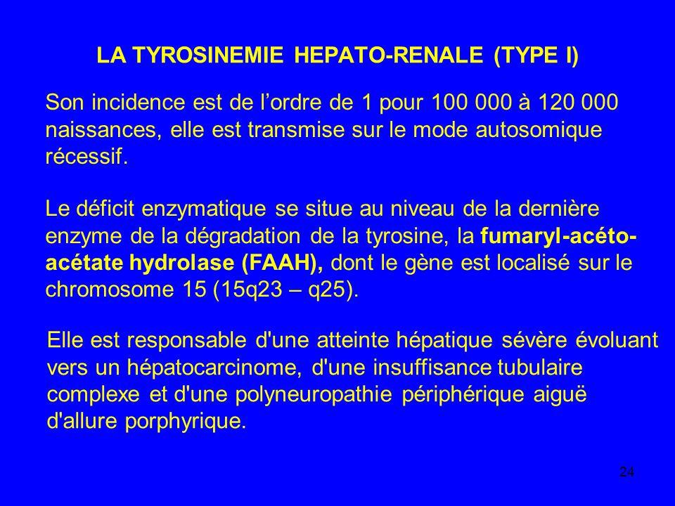 24 LA TYROSINEMIE HEPATO-RENALE (TYPE I) Son incidence est de lordre de 1 pour 100 000 à 120 000 naissances, elle est transmise sur le mode autosomiqu