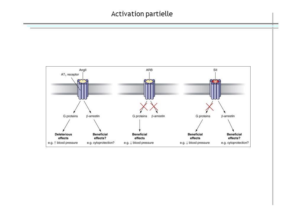 Activation partielle