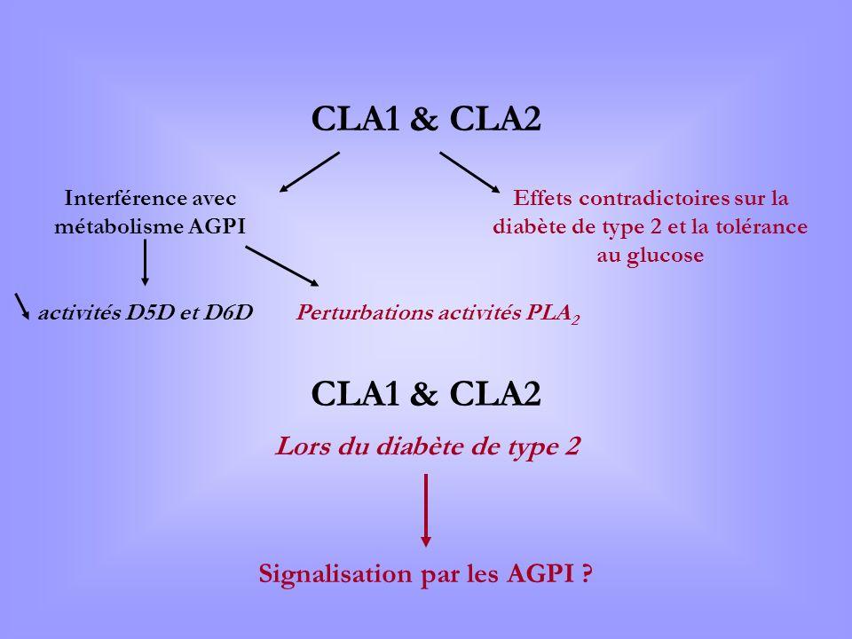 CLA1 & CLA2 Interférence avec métabolisme AGPI Effets contradictoires sur la diabète de type 2 et la tolérance au glucose activités D5D et D6D Perturb