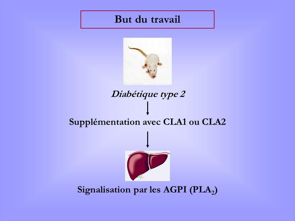But du travail Diabétique type 2 Signalisation par les AGPI (PLA 2 ) Supplémentation avec CLA1 ou CLA2