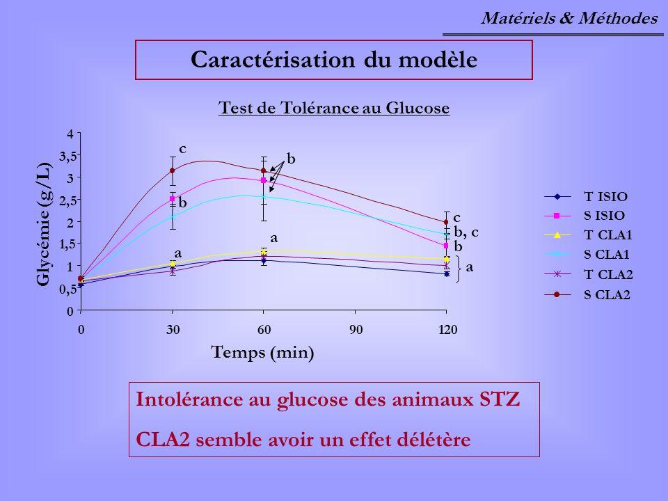 Caractérisation du modèle Test de Tolérance au Glucose T ISIO S ISIO T CLA1 S CLA1 T CLA2 S CLA2 0 0,5 1 1,5 2 2,5 3 3,5 4 0306090120 a b c a b a b b,