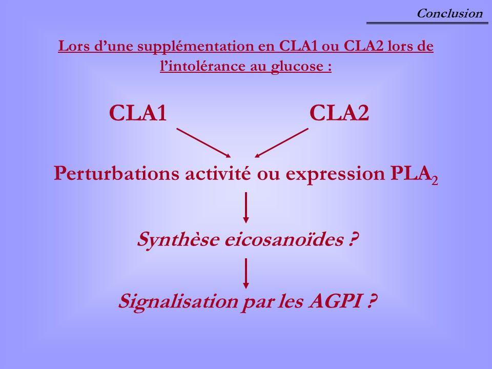 Conclusion Lors dune supplémentation en CLA1 ou CLA2 lors de lintolérance au glucose : CLA1 CLA2 Perturbations activité ou expression PLA 2 Synthèse e