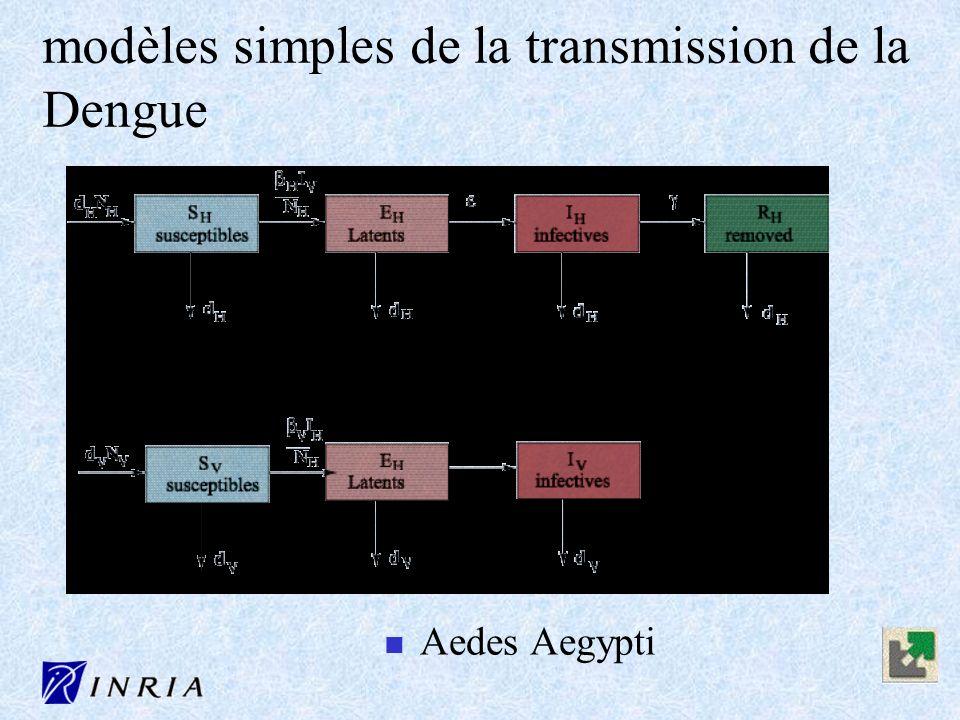 n Aedes Aegypti modèles simples de la transmission de la Dengue