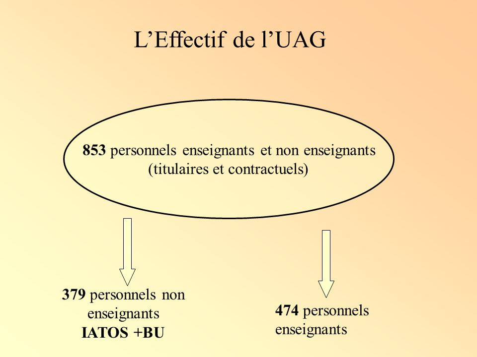 Répartition du personnel titulaire IATOS & BU par chapitre budgétaire et entre service