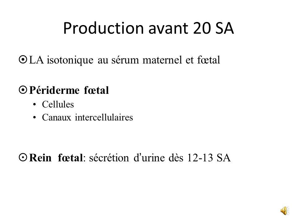 Production avant 20 SA LA isotonique au sérum maternel et fœtal Périderme fœtal Cellules Canaux intercellulaires Rein fœtal: sécrétion durine dès 12-1