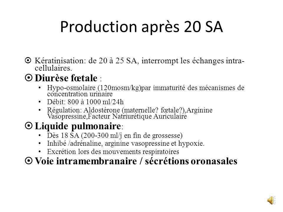 Production après 20 SA Kératinisation: de 20 à 25 SA, interrompt les échanges intra- cellulaires. Diurèse fœtale : Hypo-osmolaire (120mosm/kg)par imma