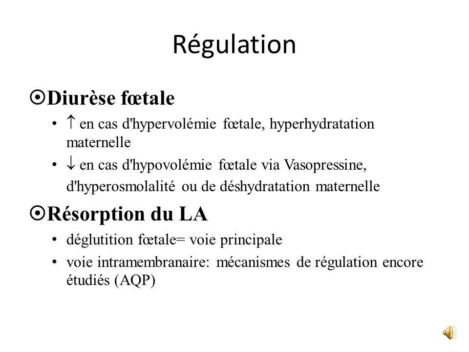 Régulation Diurèse fœtale en cas d'hypervolémie fœtale, hyperhydratation maternelle en cas d'hypovolémie fœtale via Vasopressine, d'hyperosmolalité ou