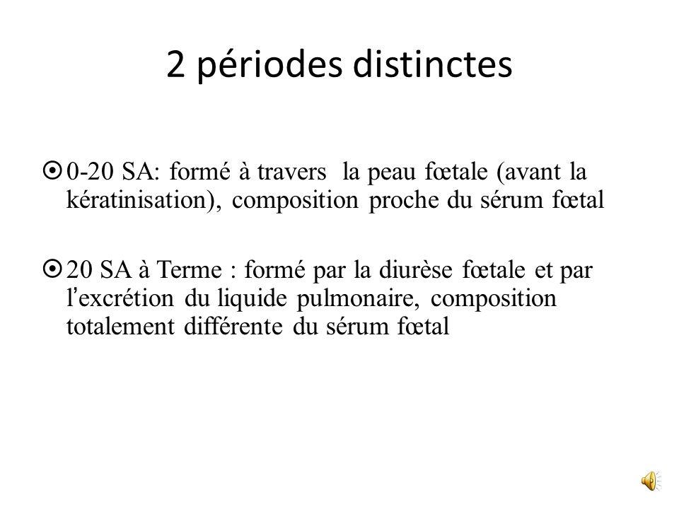 2 périodes distinctes 0-20 SA: formé à travers la peau fœtale (avant la kératinisation), composition proche du sérum fœtal 20 SA à Terme : formé par l