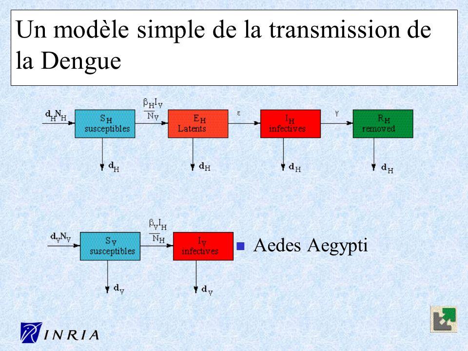 Un modèle simple de la transmission de la Dengue n Aedes Aegypti