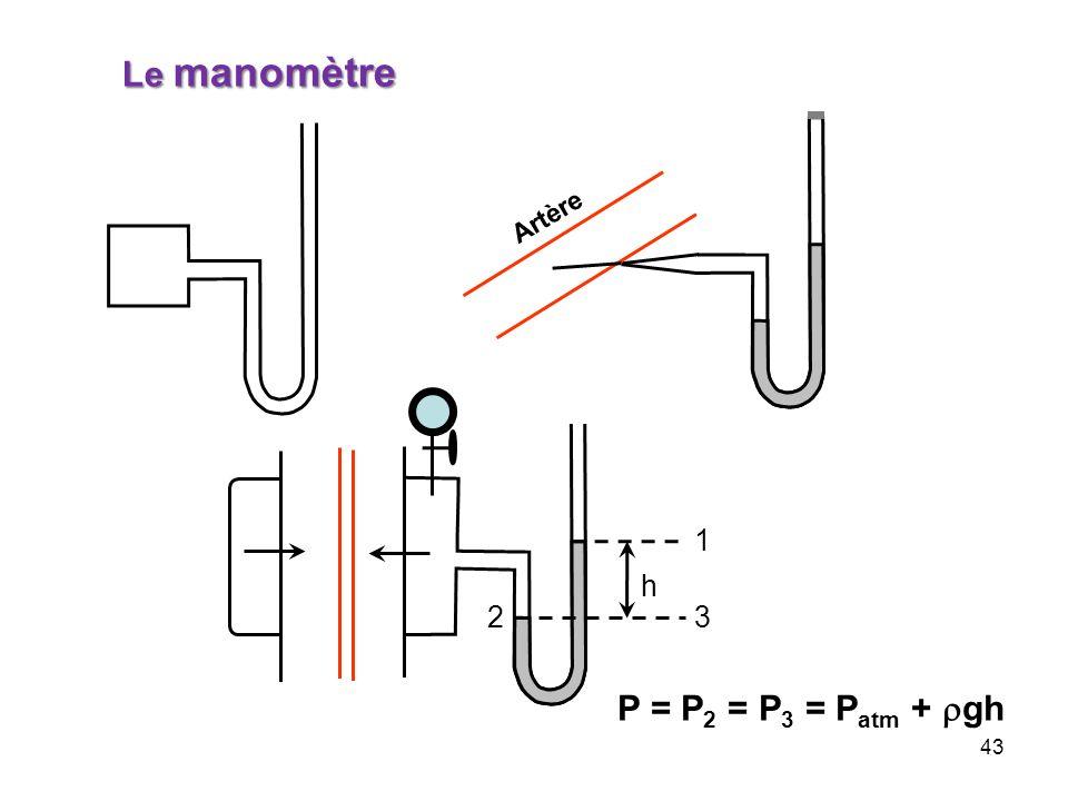 43 Artère Le manomètre P = P 2 = P 3 = P atm + gh 23 1 h