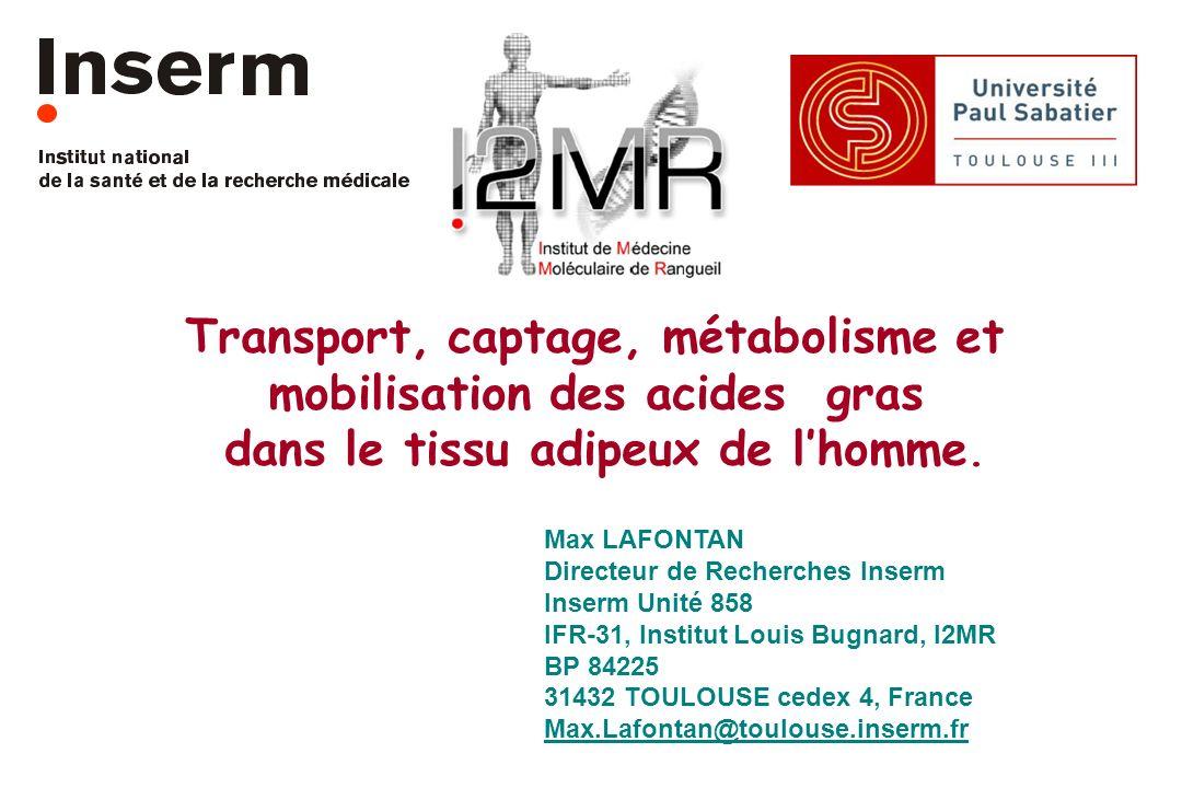 Transport, captage, métabolisme et mobilisation des acides gras dans le tissu adipeux de lhomme. Max LAFONTAN Directeur de Recherches Inserm Inserm Un