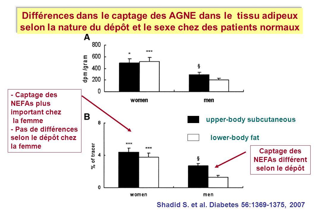 Shadid S. et al. Diabetes 56:1369-1375, 2007 Différences dans le captage des AGNE dans le tissu adipeux selon la nature du dépôt et le sexe chez des p