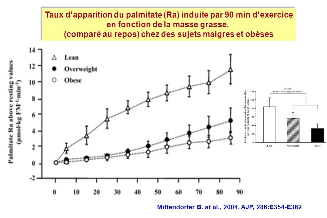 Mittendorfer B. at al., 2004, AJP, 286:E354-E362 Taux dapparition du palmitate (Ra) induite par 90 min dexercice en fonction de la masse grasse. (comp