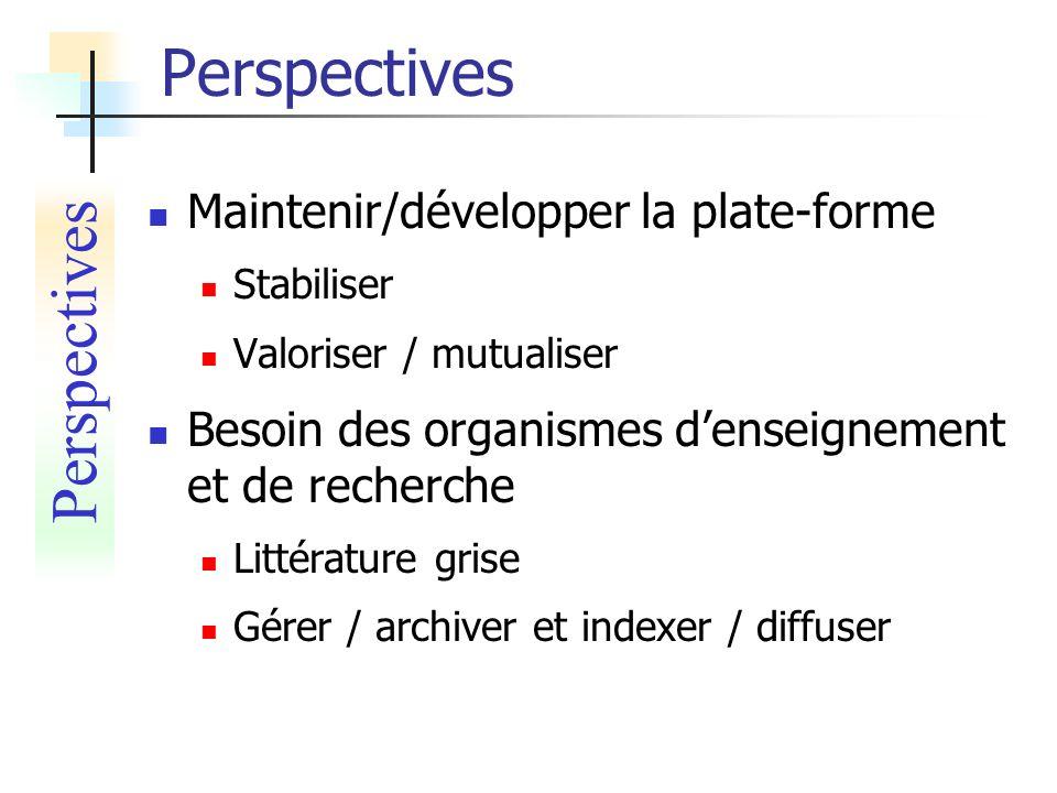 Maintenir/développer la plate-forme Stabiliser Valoriser / mutualiser Besoin des organismes denseignement et de recherche Littérature grise Gérer / ar