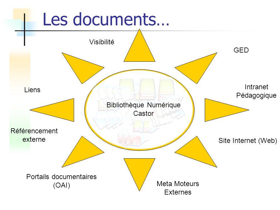 Bibliothèque Numérique Castor Site Internet (Web) Intranet Pédagogique Meta Moteurs Externes Portails documentaires (OAI) Liens Visibilité GED Référen