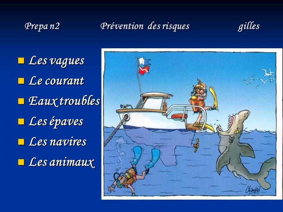 Prepa n2 Prévention des risques (les vagues ) gilles LES RISQUES - Risque de chute lors de la mise à l eau (à cause des mouvements du bateau), - Risque de prendre l échelle dans les gencives ou dans les tibias à la remontée sur le bateau, - Risque de boire la tasse en surface, - Risque d avoir le mal de mer en restant à faible profondeur, - Risque de perdre sa palanquée, en surface, - Risque de se voir envoyer sur les rochers de la côte ou sur le récif