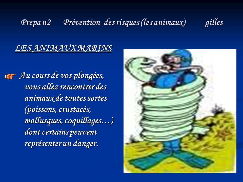 Prepa n2 Prévention des risques (les animaux) gilles LES ANIMAUX MARINS Au cours de vos plongées, vous allez rencontrer des animaux de toutes sortes (