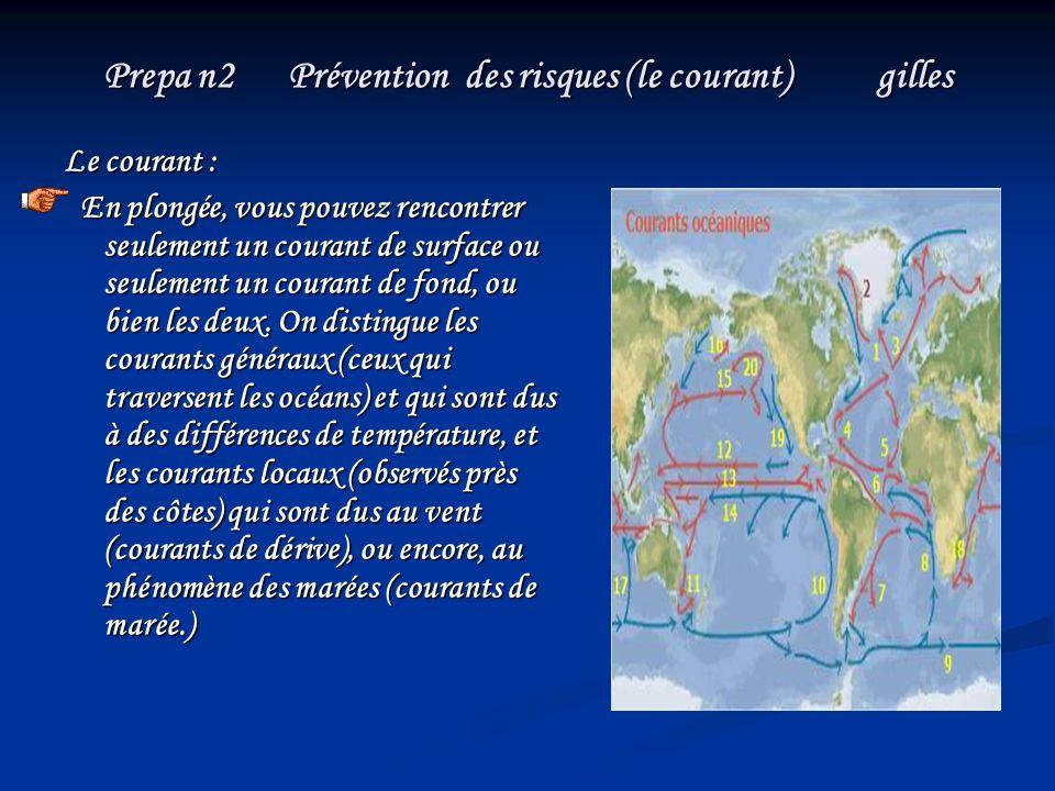 Prepa n2 Prévention des risques (le courant) gilles Le courant : En plongée, vous pouvez rencontrer seulement un courant de surface ou seulement un co
