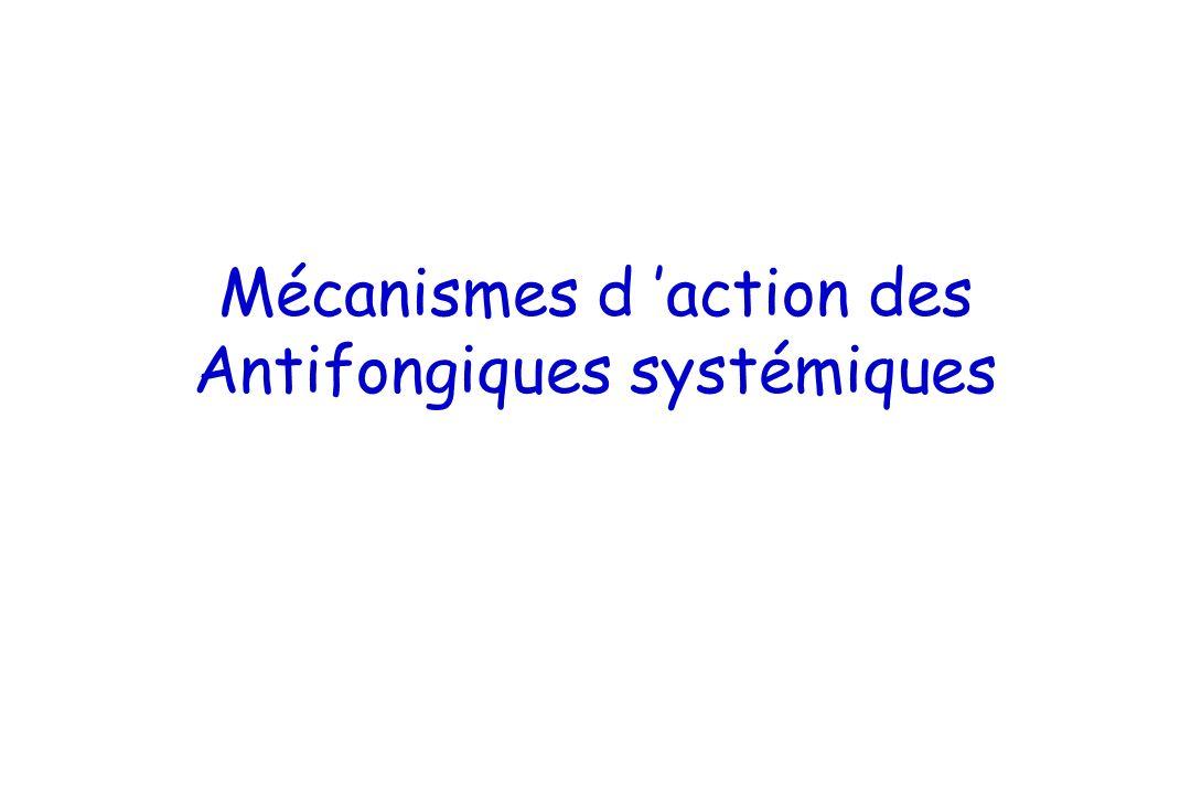Mécanismes d action des Antifongiques systémiques