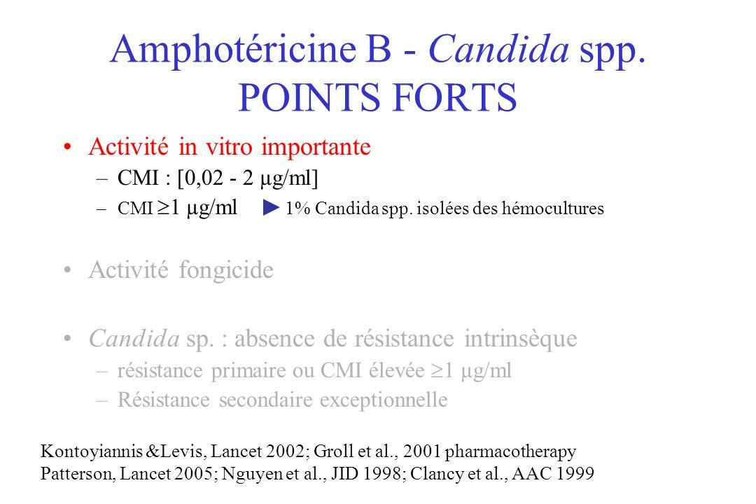 Amphotéricine B - Candida spp. POINTS FORTS Activité in vitro importante –CMI : [0,02 - 2 µg/ml] –CMI 1 µg/ml 1% Candida spp. isolées des hémocultures