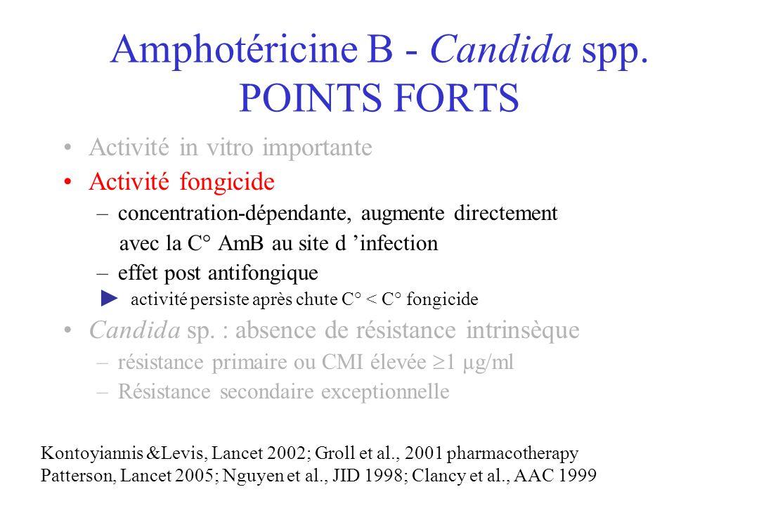 Amphotéricine B - Candida spp. POINTS FORTS Activité in vitro importante Activité fongicide –concentration-dépendante, augmente directement avec la C°