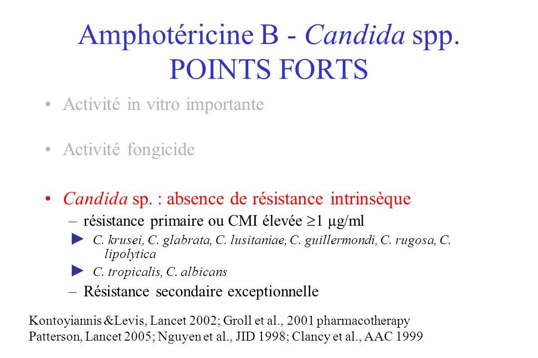 Amphotéricine B - Candida spp. POINTS FORTS Activité in vitro importante Activité fongicide Candida sp. : absence de résistance intrinsèque –résistanc
