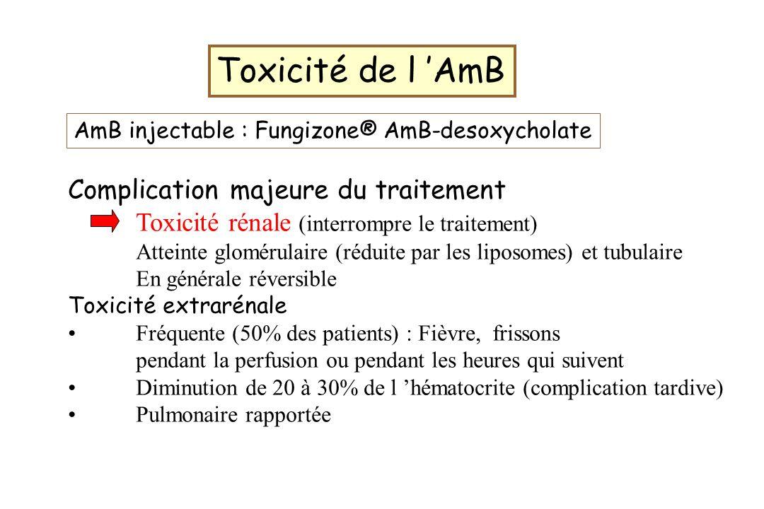Toxicité de l AmB Complication majeure du traitement Toxicité rénale (interrompre le traitement) Atteinte glomérulaire (réduite par les liposomes) et