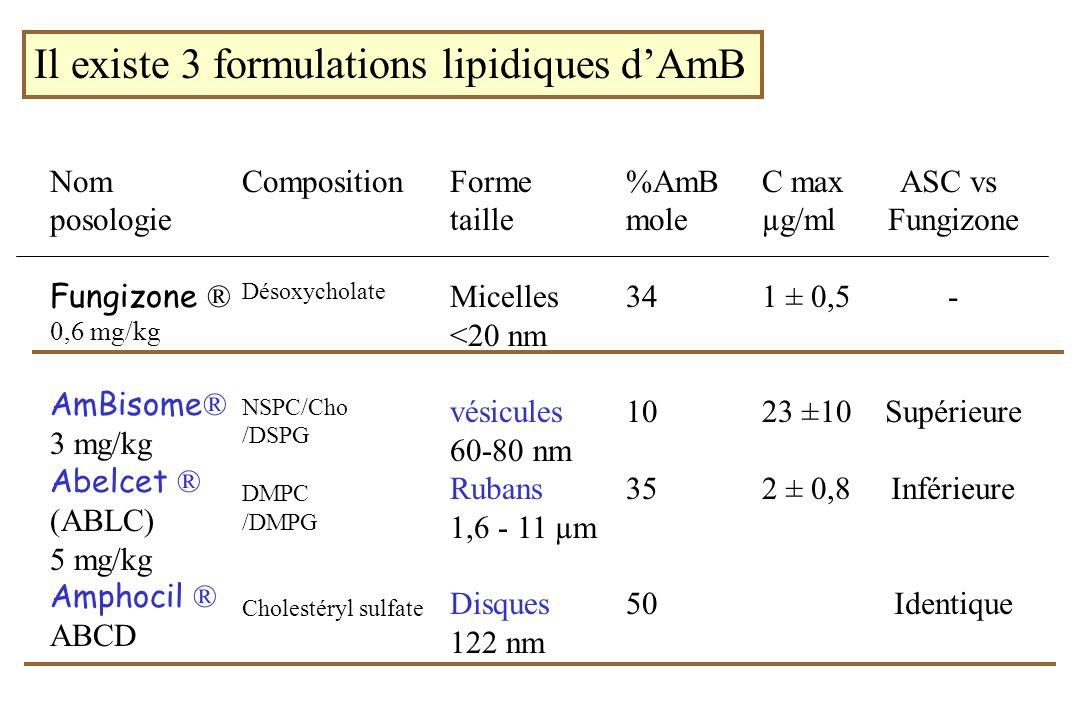 Il existe 3 formulations lipidiques dAmB Nom posologie Fungizone ® 0,6 mg/kg AmBisome ® 3 mg/kg Abelcet ® (ABLC) 5 mg/kg Amphocil ® ABCD Composition D