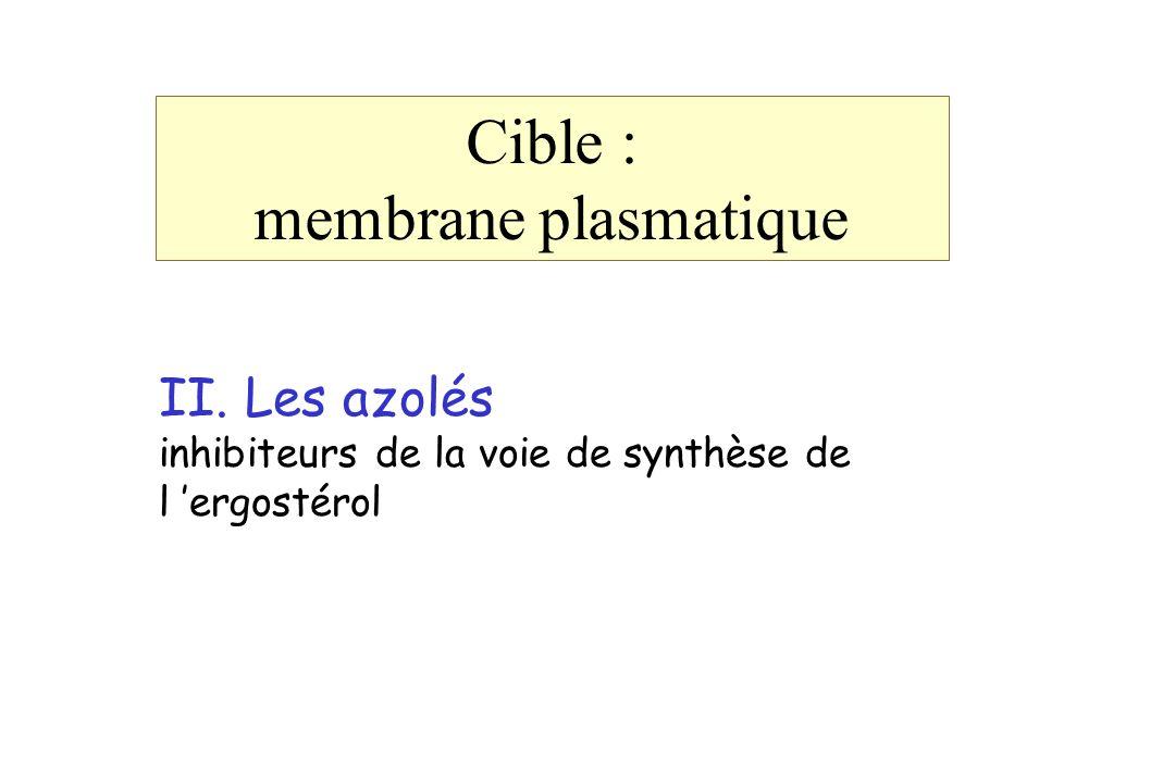 Cible : membrane plasmatique II. Les azolés inhibiteurs de la voie de synthèse de l ergostérol
