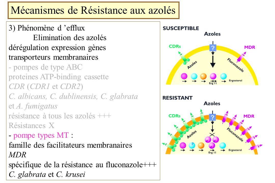 Mécanismes de Résistance aux azolés 3) Phénomène d efflux Elimination des azolés dérégulation expression gènes transporteurs membranaires - pompes de