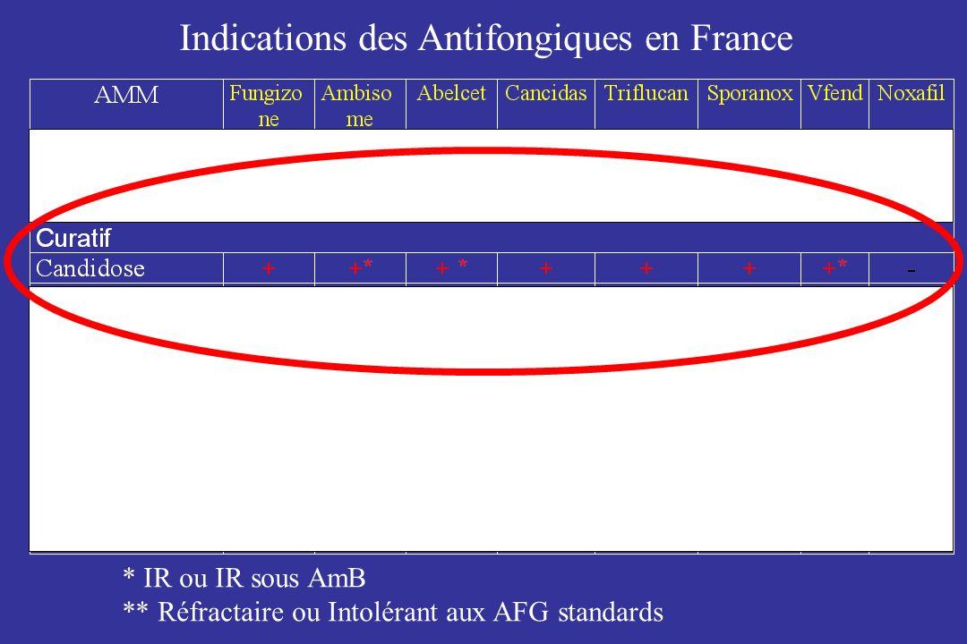 Indications des Antifongiques en France * IR ou IR sous AmB ** Réfractaire ou Intolérant aux AFG standards