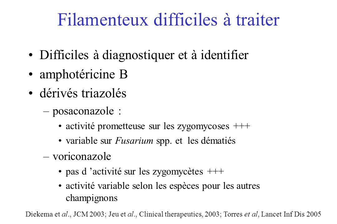 Filamenteux difficiles à traiter Difficiles à diagnostiquer et à identifier amphotéricine B dérivés triazolés –posaconazole : activité prometteuse sur