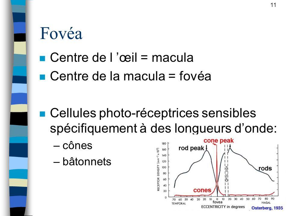 11 Fovéa n Centre de l œil = macula n Centre de la macula = fovéa n Cellules photo-réceptrices sensibles spécifiquement à des longueurs donde: –cônes