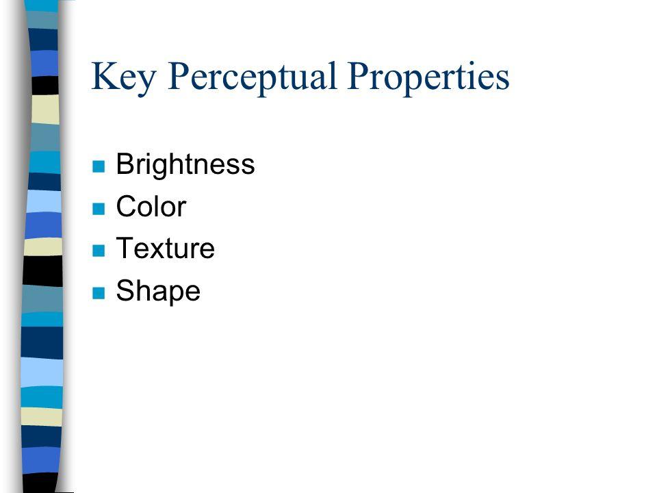 Key Perceptual Properties n Brightness n Color n Texture n Shape