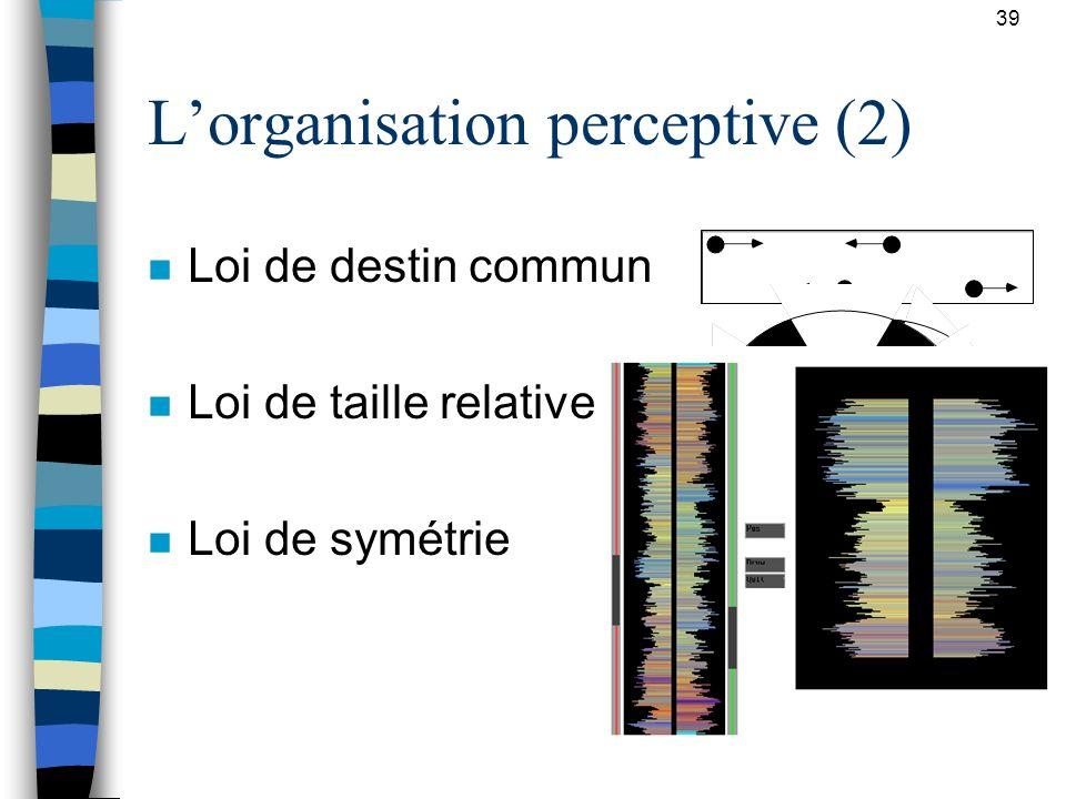 39 Lorganisation perceptive (2) n Loi de destin commun n Loi de taille relative n Loi de symétrie