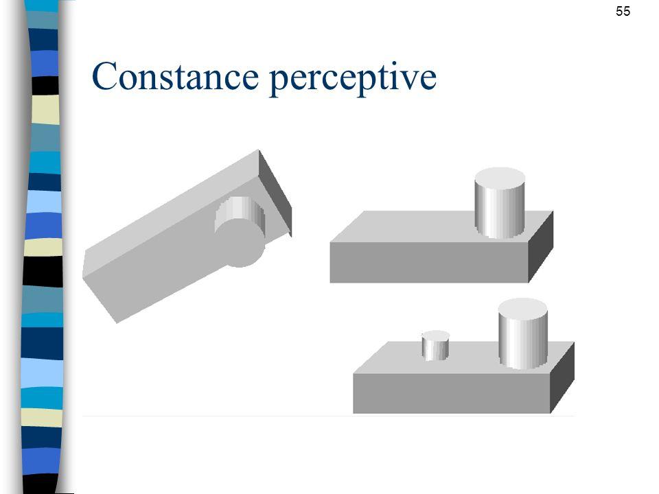 55 Constance perceptive n Propriétés invariantes des objets perçus: –constance perceptive de la forme –constance perceptive de la taille –constance pe