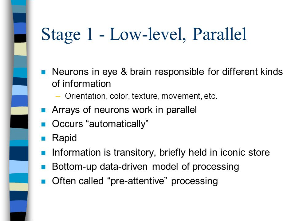 Stage 1 - Low-level, Parallel n Neurons in eye & brain responsible for different kinds of information –Orientation, color, texture, movement, etc. n A