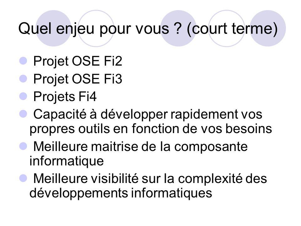 Quel enjeu pour vous ? (court terme) Projet OSE Fi2 Projet OSE Fi3 Projets Fi4 Capacité à développer rapidement vos propres outils en fonction de vos