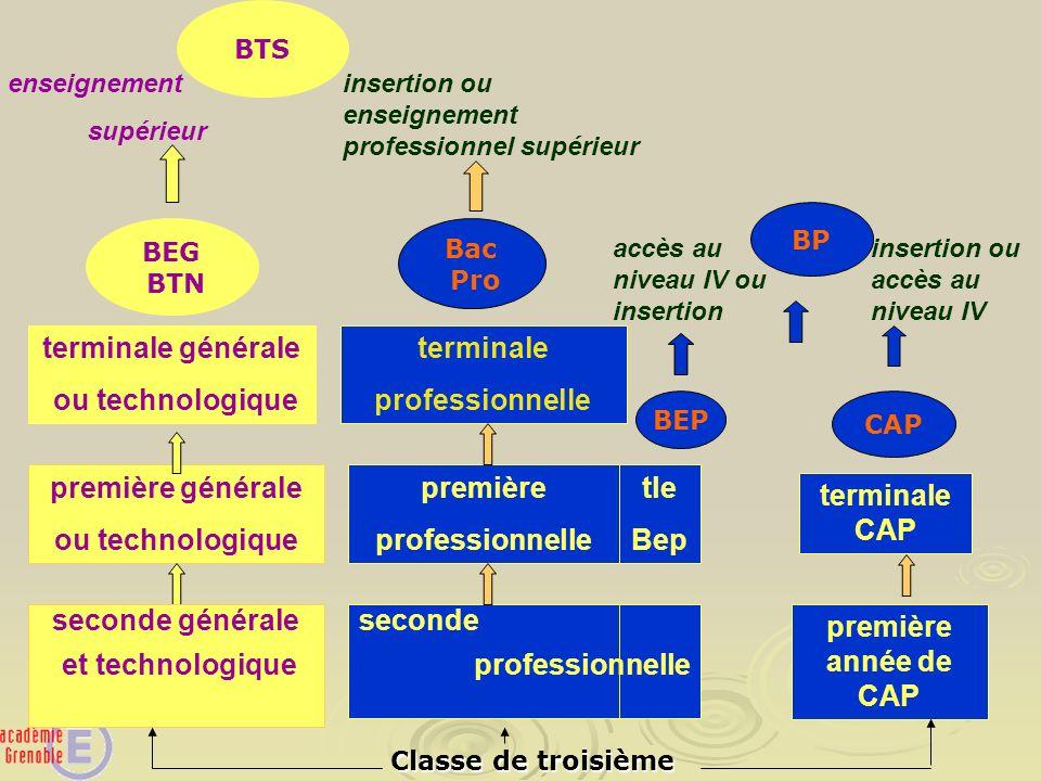 seconde professionnelle première année de CAP première générale ou technologique terminale générale ou technologique première professionnelle terminal
