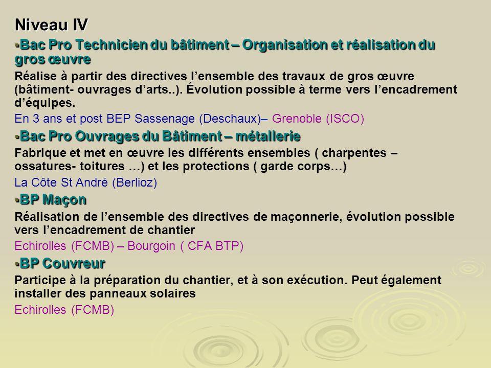 Niveau IV Bac Pro Technicien du bâtiment – Organisation et réalisation du gros œuvre Bac Pro Technicien du bâtiment – Organisation et réalisation du g
