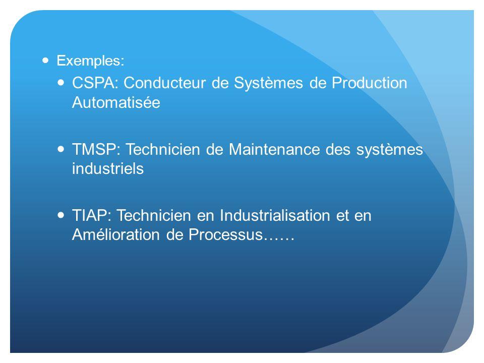Exemples: CSPA: Conducteur de Systèmes de Production Automatisée TMSP: Technicien de Maintenance des systèmes industriels TIAP: Technicien en Industri