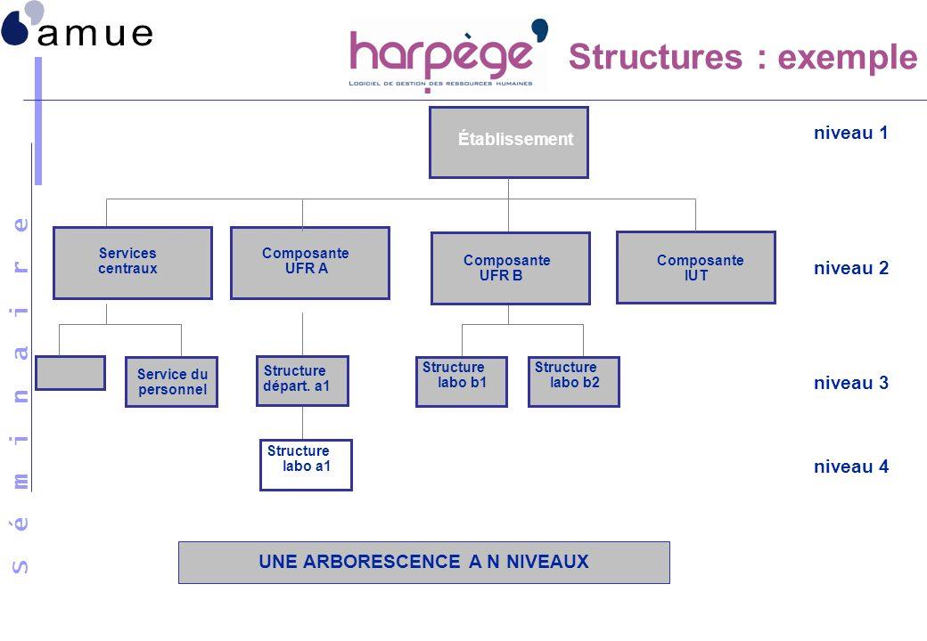 S é m i n a i r e UNE ARBORESCENCE A N NIVEAUX Établissement Composante UFR A Composante IUT Structure labo b1 Structure départ. a1 Structure labo b2