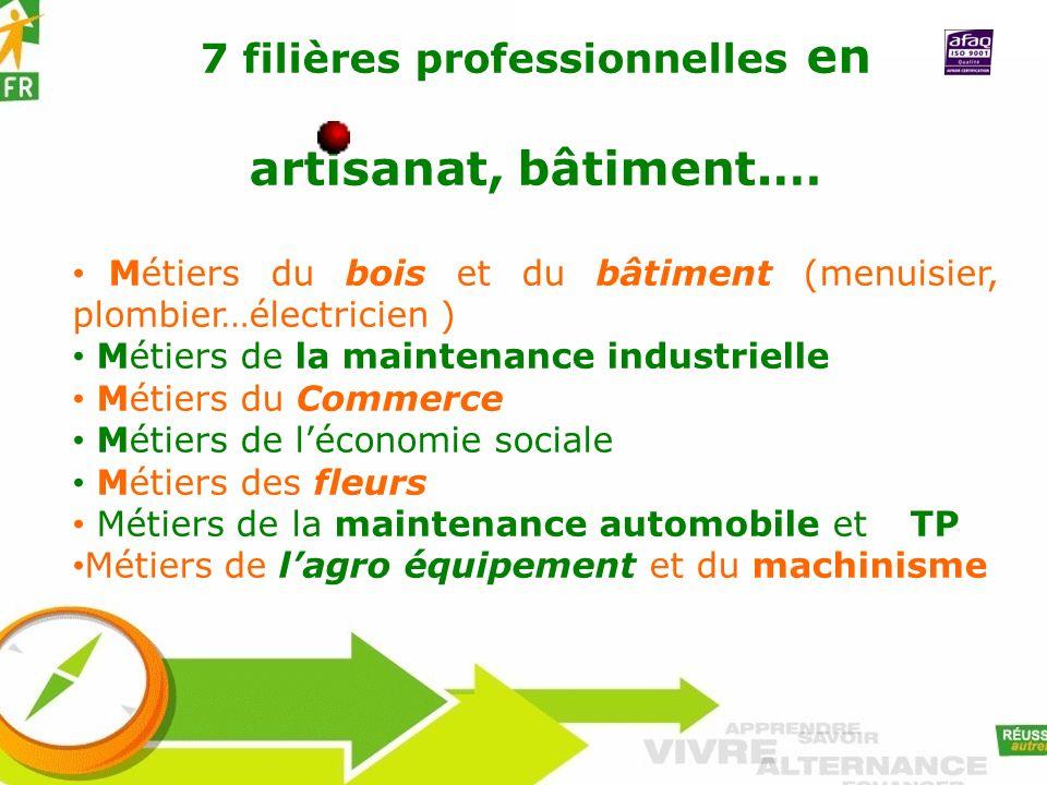 7 filières professionnelles en artisanat, bâtiment.… Métiers du bois et du bâtiment (menuisier, plombier…électricien ) Métiers de la maintenance indus