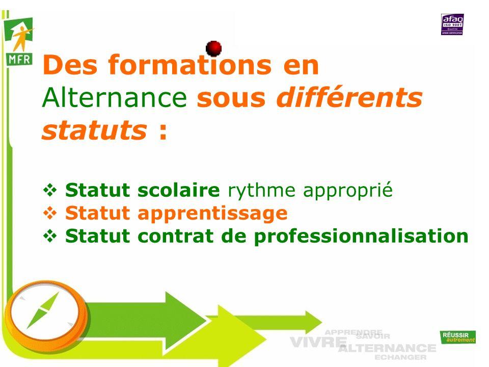 Des formations en Alternance sous différents statuts : Statut scolaire rythme approprié Statut apprentissage Statut contrat de professionnalisation