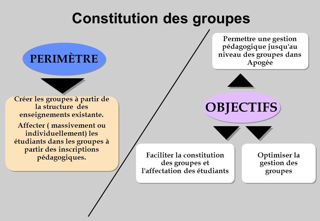 Permettre une gestion pédagogique jusqu au niveau des groupes dans Apogée Optimiser la gestion des groupes Faciliter la constitution des groupes et l affectation des étudiants Créer les groupes à partir de la structure des enseignements existante.