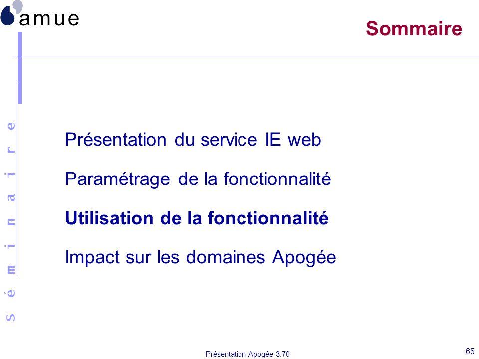 S é m i n a i r e Présentation Apogée 3.70 65 Sommaire Présentation du service IE web Paramétrage de la fonctionnalité Utilisation de la fonctionnalit