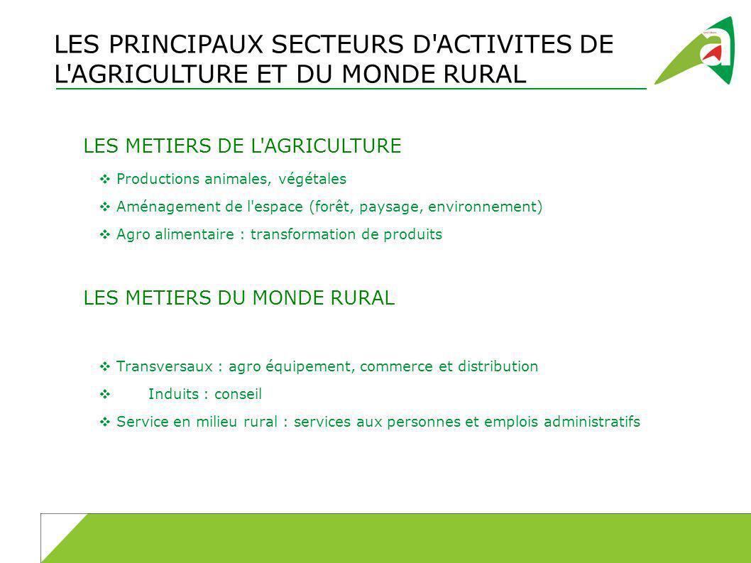 LES PRINCIPAUX SECTEURS D'ACTIVITES DE L'AGRICULTURE ET DU MONDE RURAL LES METIERS DE L'AGRICULTURE Productions animales, végétales Aménagement de l'e