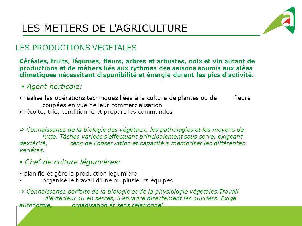 LES METIERS DE L'AGRICULTURE LES PRODUCTIONS VEGETALES Céréales, fruits, légumes, fleurs, arbres et arbustes, noix et vin autant de productions et de