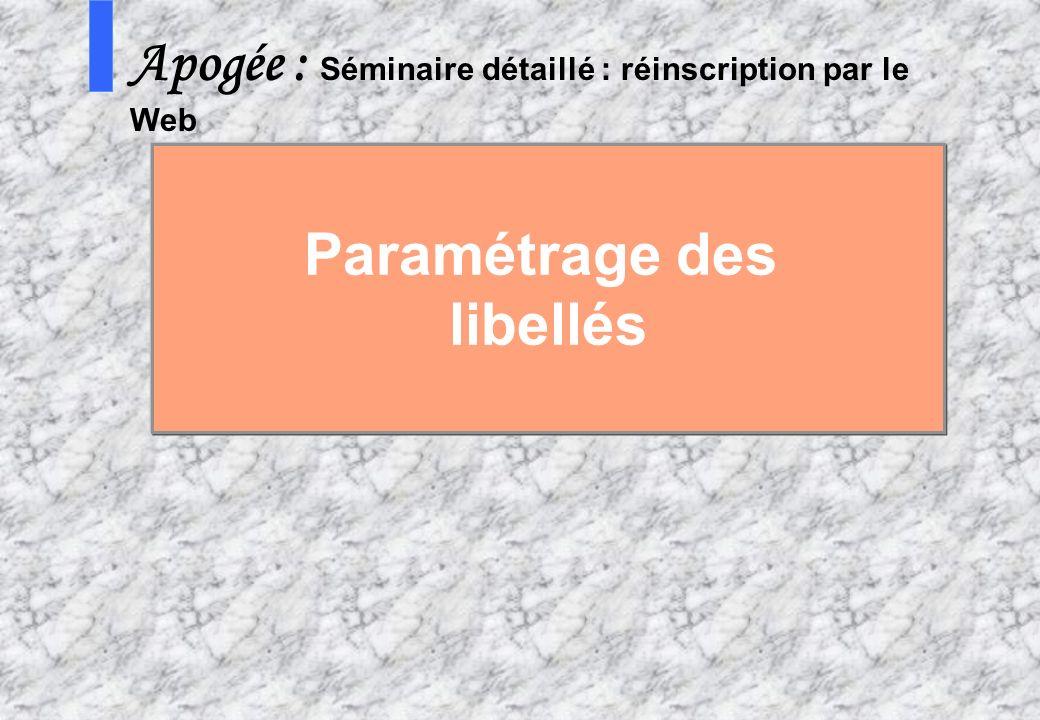 59 AMUE mars 2004 : Séminaire détaillé présentation Web S Apogée : Séminaire détaillé : réinscription par le Web Paramétrage des libellés
